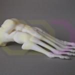 wydruk 3D - model stopy